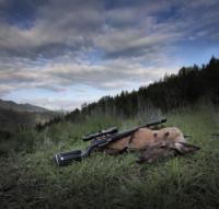 STEYR MONOBLOC hunting 001