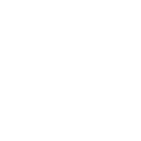 STEYR_HELPS_neg