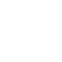 STEYR_PISTOL_Linie_neg